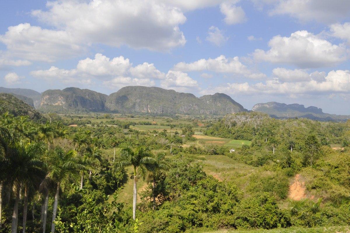 Tabachny plantatcii Cuba (1)