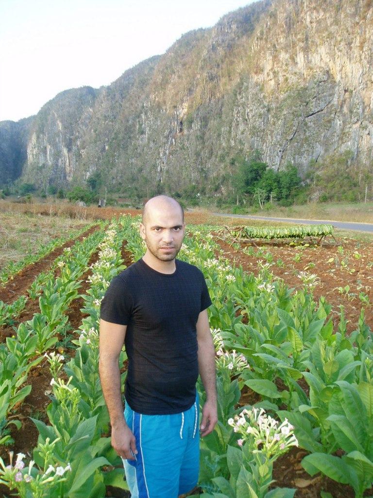 Tabachny plantatcii Cuba (13)