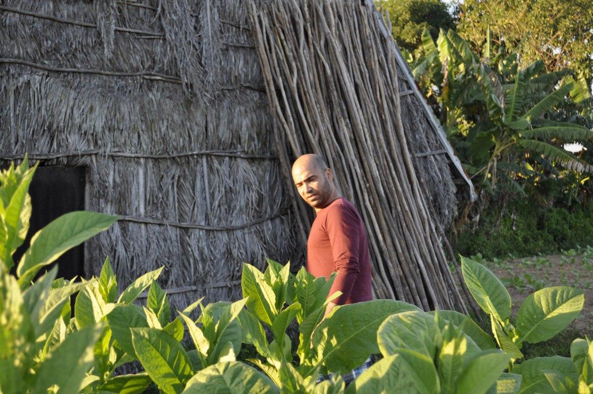 Tabachny plantatcii Cuba (9)